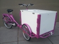 Icicle Tricycles Ice Cream Bike Cart