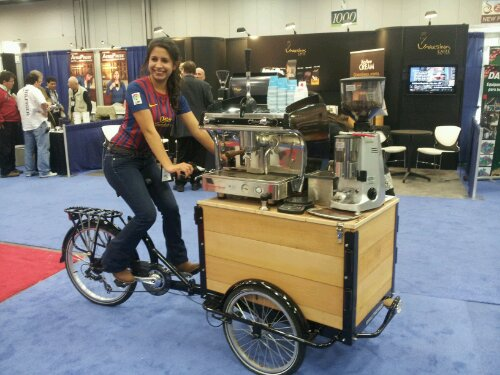 Icicle Tricycles Espresso Bike
