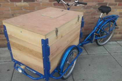 Icicle Tricycles Custom Cedar Bike