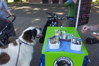 Icicle Tricycles Dog Food Bike