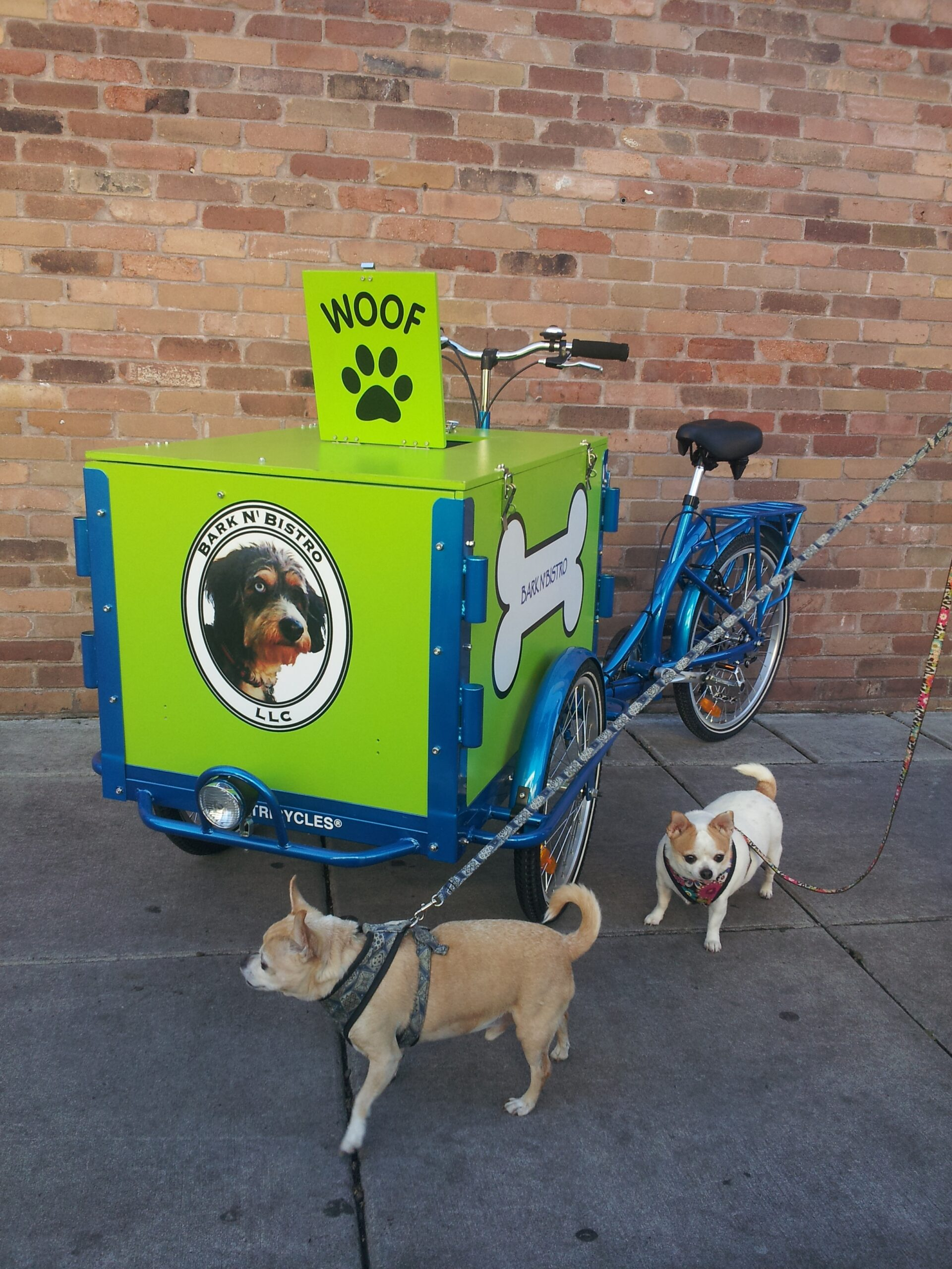Icicle Tricycles Dog Treat Bike