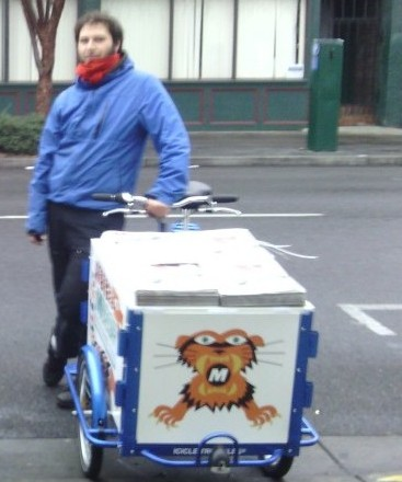Icicle Tricycles Newspaper Delivery Bike