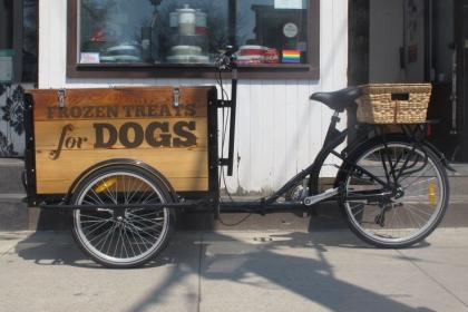 Icicle Tricycles Dog Food Bike - bone house treats for dogs