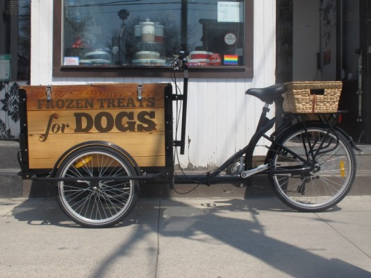 Icicle Tricycles Dod Food Ice Cream Bike - The Bone House Frozen Treats for Dogs