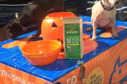 Icicle Tricycle Dog Food Bike, Scrappy Pet Food