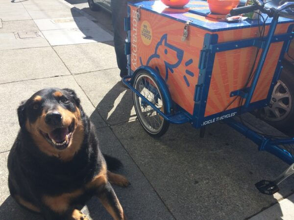 Icicle Tricycle Dog Food Bike