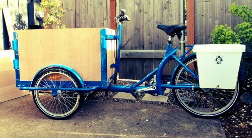 A Icicle Tricycles Front Load Ice Cream Bike / Trike with a blue frame parked in a back yard