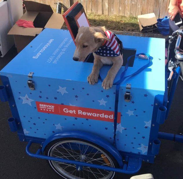 Credit Union branded custom wrap ice cream bike with dog in the hatch